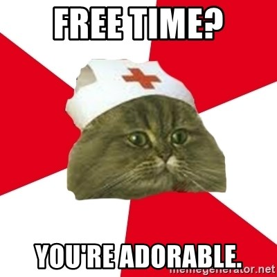 Nursing Student Cat - Free time? you're adorable.