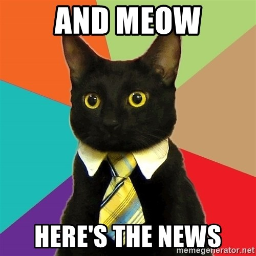 Business Cat - And MEOW HERE'S THE NEWS