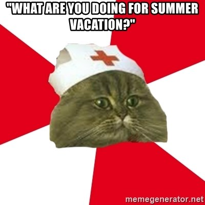 """Nursing Student Cat - """"what are you doing for summer vacation?"""""""