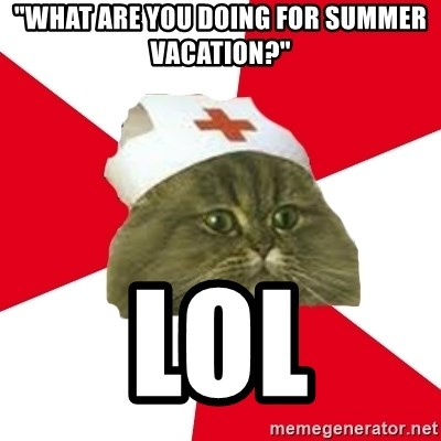 """Nursing Student Cat - """"what are you doing for summer vacation?"""" lol"""