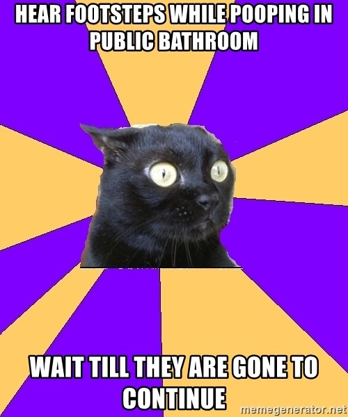 Anxiety Cat - hear footsteps while pooping in public bathroom wait till they are gone to continue