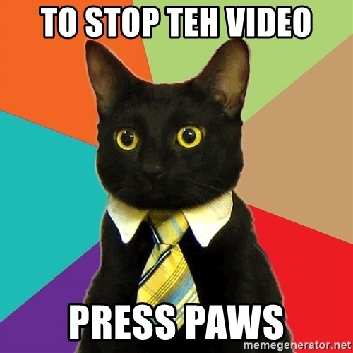 Business Cat - to stop teh video press paws