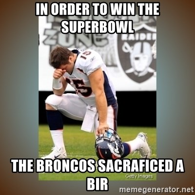 Had To Tebow - in order to win the superbowl the broncos sacraficed a bir
