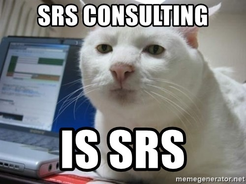 Serious Cat - SRS CONSULTING IS SRS
