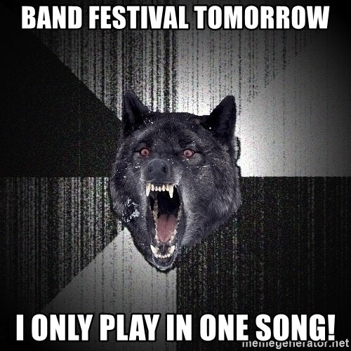 Insanity Wolf - band festival tomorrow i only play in one song!