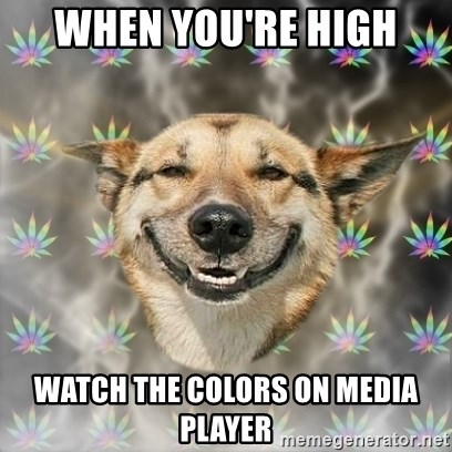 Stoner Dog - when you're high watch the colors on media player