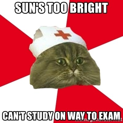 Nursing Student Cat - SUN'S TOO BRIGHT CAN'T STUDY ON WAY TO EXAM