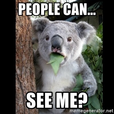 Koala can't believe it - People can... See me?