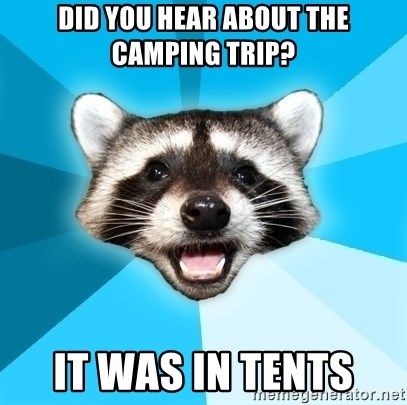 Lame Pun Coon - did you hear about the camping trip? it was in tents