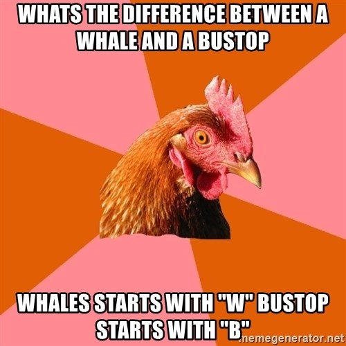 """Anti Joke Chicken - whats the difference between a whale and a bustop whales starts with """"W"""" Bustop starts with """"B"""""""