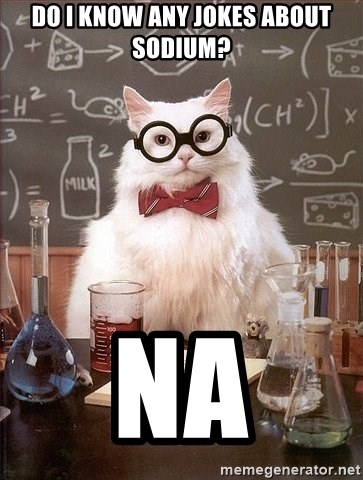 Chemistry Cat - Do i know any jokes about sodium? Na