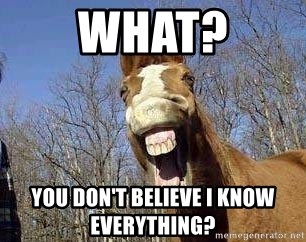 Horse - What? You don't believe I know everything?