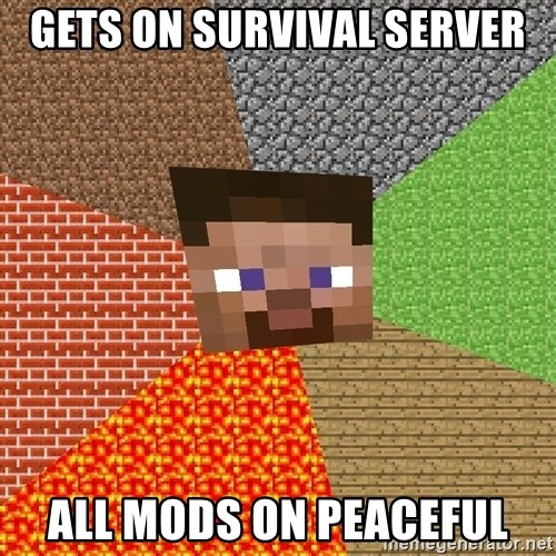 Minecraft Guy - gets on survival server all mods on peaceful