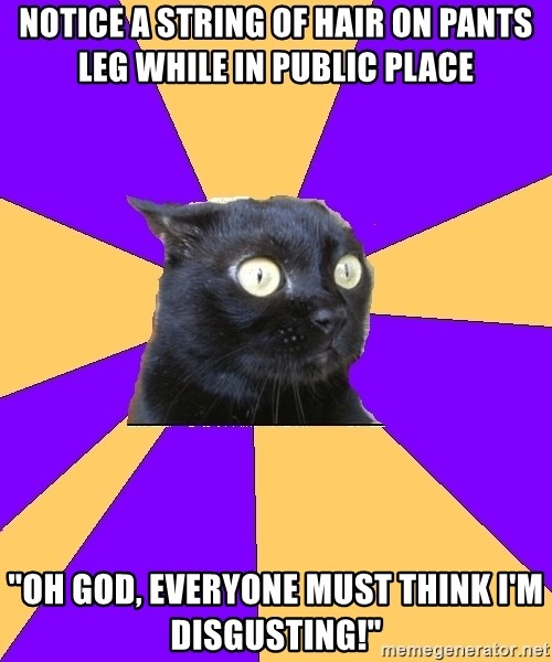 """Anxiety Cat - NOTICE A STRING OF HAIR ON PANTS LEG WHILE IN PUBLIC PLACE """"OH GOD, EVERYONE MUST THINK I'M DISGUSTING!"""""""