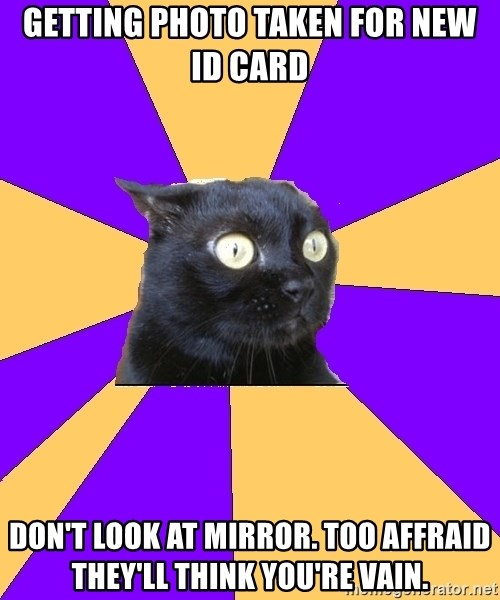 Anxiety Cat - getting photo taken for new id card don't look at mirror. too affraid they'll think you're vain.