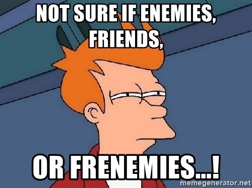 FRY FRY - NOT SURE IF ENEMIES, FRIENDS, OR FRENEMIES...!