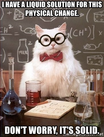 Chemistry Cat - I have a liquid solution for this physical change. don't worry, it's solid.