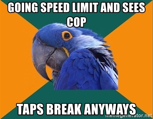Paranoid Parrot - going speed limit and sees cop taps break anyways