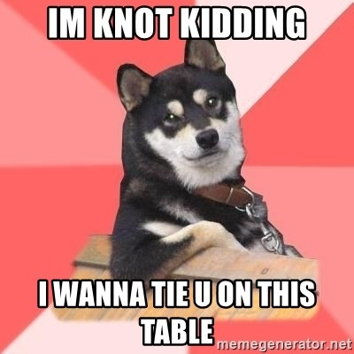Cool Dog - im knot kidding i wanna tie u on this table