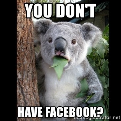 Koala can't believe it - you don't have facebook?