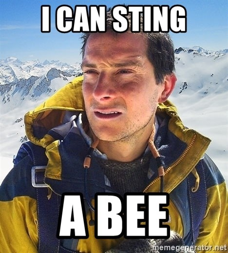Bear Grylls Loneliness - I CAN STING A BEE