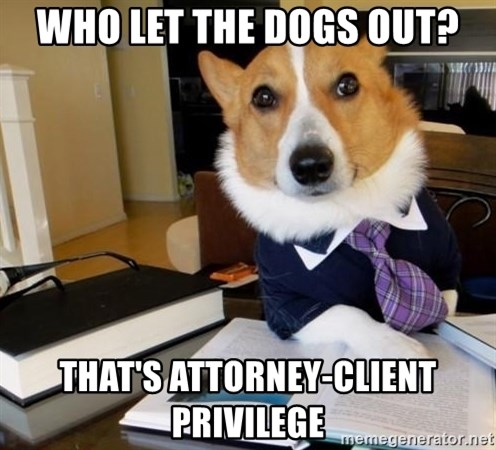 Dog Lawyer - who let the dogs out? That's attorney-client privilege