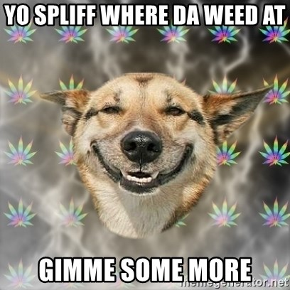 Stoner Dog - YO SPLIFF WHERE da WEED AT GIMME SOME MORE