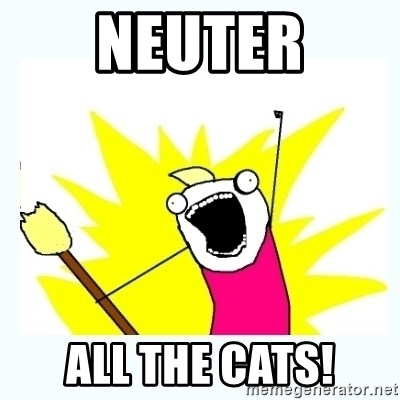 All the things - neuter all the cats!