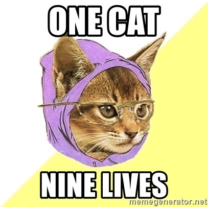 Hipster Kitty - One cat nine lives