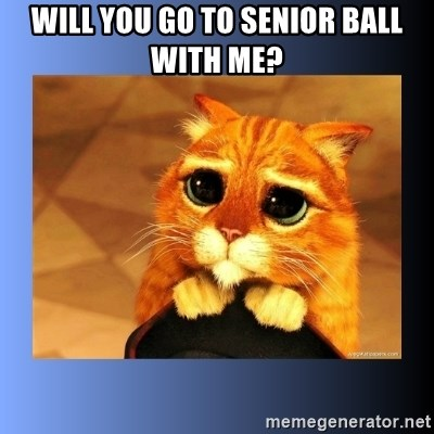 puss in boots eyes 2 - Will you go to senior ball with me?
