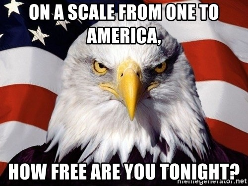 American Pride Eagle - on a scale from one to america, how free are you tonight?