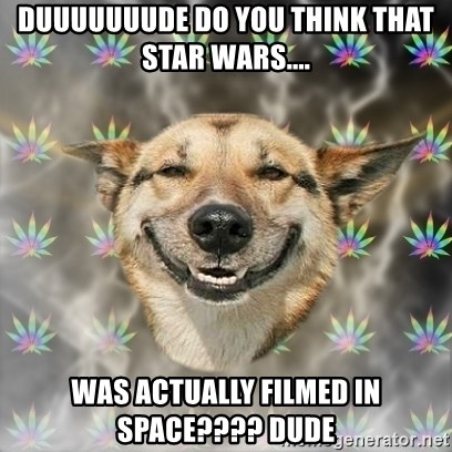 Stoner Dog - duuuuuuude do you think that star wars....  was actually filmed in space???? dude