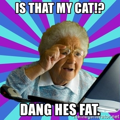 old lady - Is that my cat!? Dang hes fat.