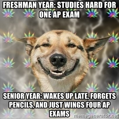 Stoner Dog - Freshman year: studies hard for one ap exam senior year: wakes up late, forgets pencils, and just wings four ap exams