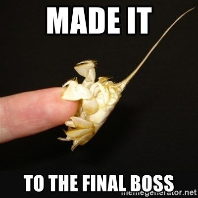 Fighty crab - made it to the final boss