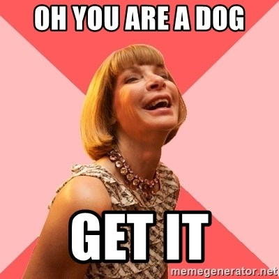 Amused Anna Wintour - Oh you are a dog get it