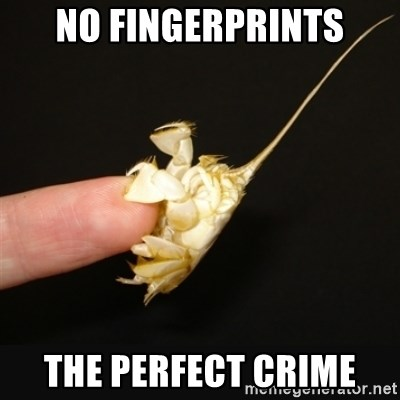 Fighty crab - no fingerprints the perfect crime