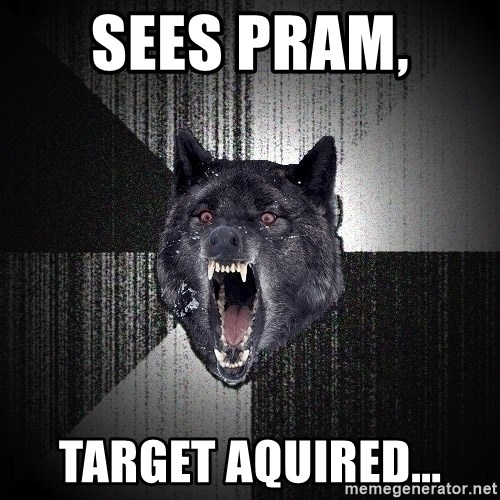 Insanity Wolf - sees pram,  target aquired...