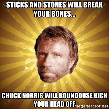 Chuck Norris Advice - Sticks and stones will break your bones... chuck norris will roundouse kick your head off