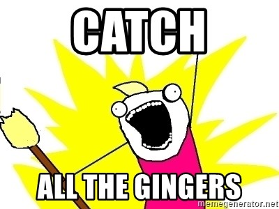 X ALL THE THINGS - catch all the gingers
