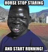 Niggest - Horse stop staring and start running!