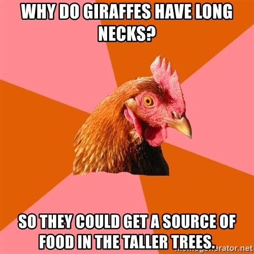 Anti Joke Chicken - why do giraffes have long necks? so they could get a source of food in the taller trees.