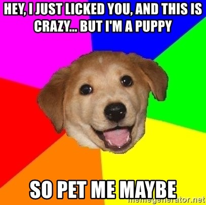 Advice Dog - Hey, I just licked you, and this is Crazy... But I'm a Puppy So Pet me maybe