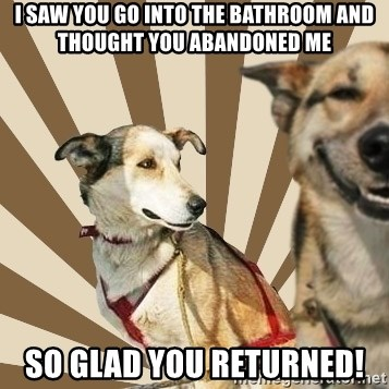 Stoner dogs concerned friend - I saw you go into the bathroom and thought you abandoned me so glad you returned!