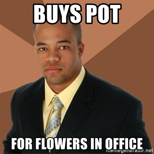 Successful Black Man - buys pot for flowers in office