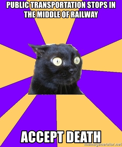 Anxiety Cat - public transportation stops in the middle of railway accept death