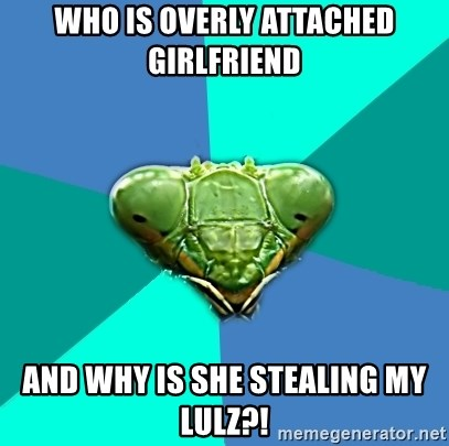 Crazy Girlfriend Praying Mantis - who is overly attached girlfriend and why is she stealing my lulz?!