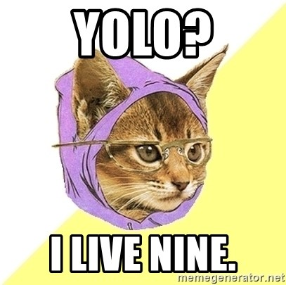Hipster Kitty - yolo? i live nine.