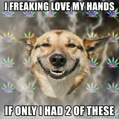 Stoner Dog - i freaking love my hands If only i had 2 of these
