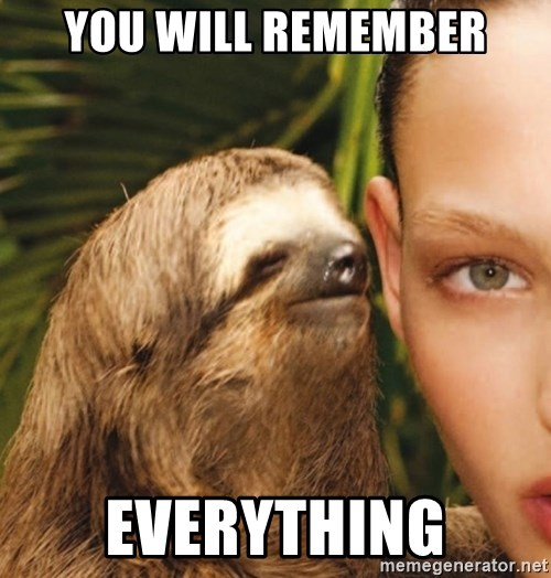 The Rape Sloth - You will remember everything